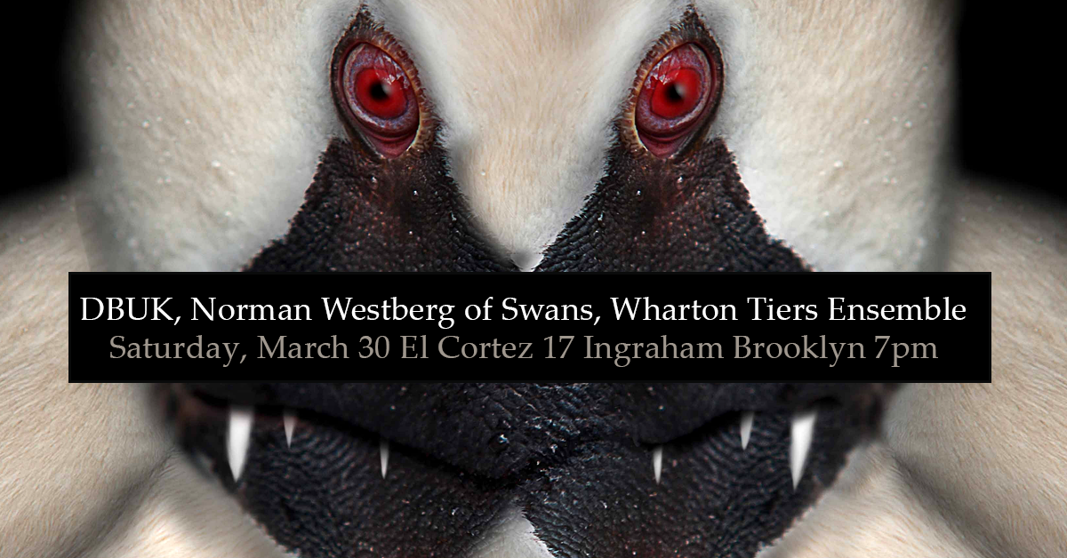 DBUK, Norman Westberg of Swans, Wharton Tiers Ensemble Saturday, March 30 El Cortez 17 Ingraham Brooklyn 7pm
